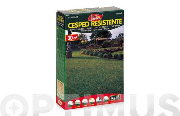 Semilla cesped resistente 1 kg