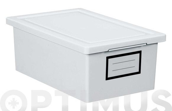 Caja ordenacion premier box 19 x 29 x 11 cm