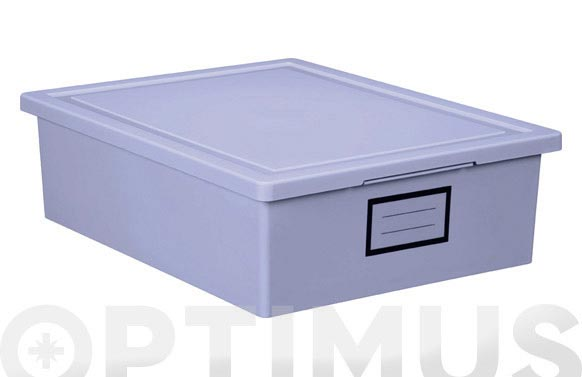 Caja ordenacion premier box 29x37x11-lila