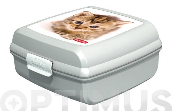 "Contenedor snap box ""m"" gatos 02276-p73-02"