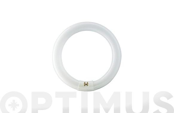 Fluorescente circular trifosforo tle-865/22w