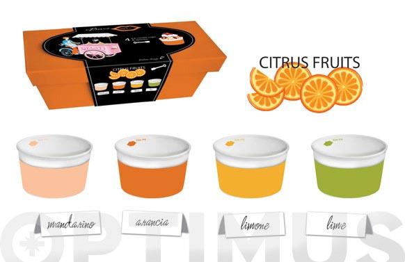 Bol helado + cuchara set regalo citricos
