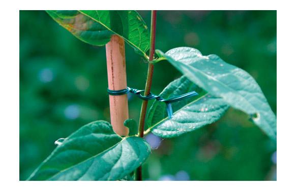 Tira plastica verde alma de alambre 25 mts