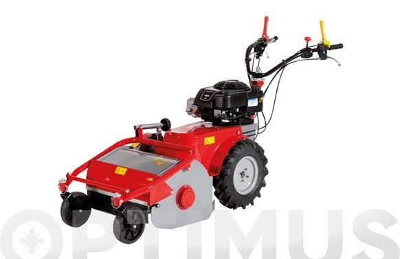 Desbrozadora martillo b&s 4.2kw tr500