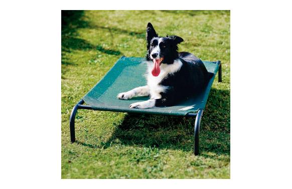Cama mascota 'm' verde 110x65x20cm hasta 36kg 'colaroo'