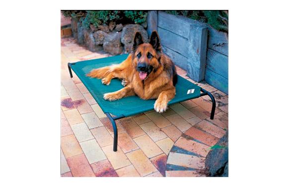 Cama mascota 'l' verde 130x80x20cm hasta 45kg 'colaroo'