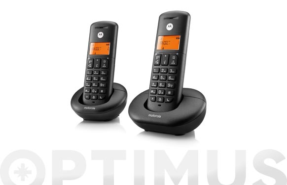Telefono inalambrico e202 duo