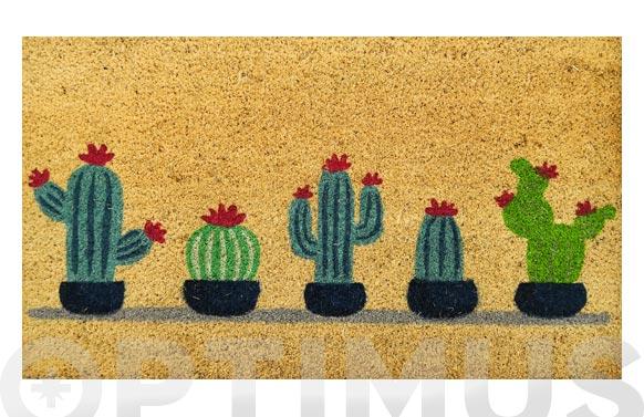Felpudo coco estampado cactus surtido 40 x 70 cm
