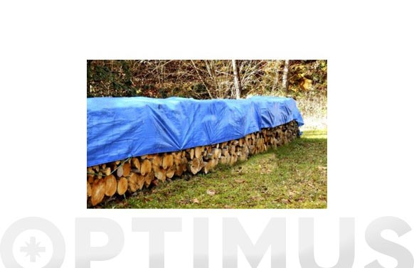 Toldo polietileno 90 grs con ojales azul/verde 10 x 15 m