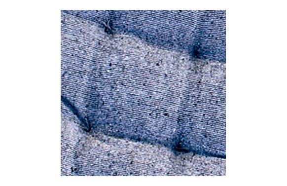Cojin silla algodon gris oscuro 40 x 40 cm